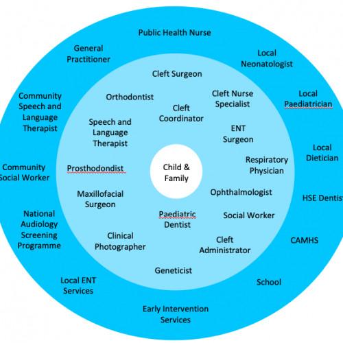 Cleft Care in Ireland